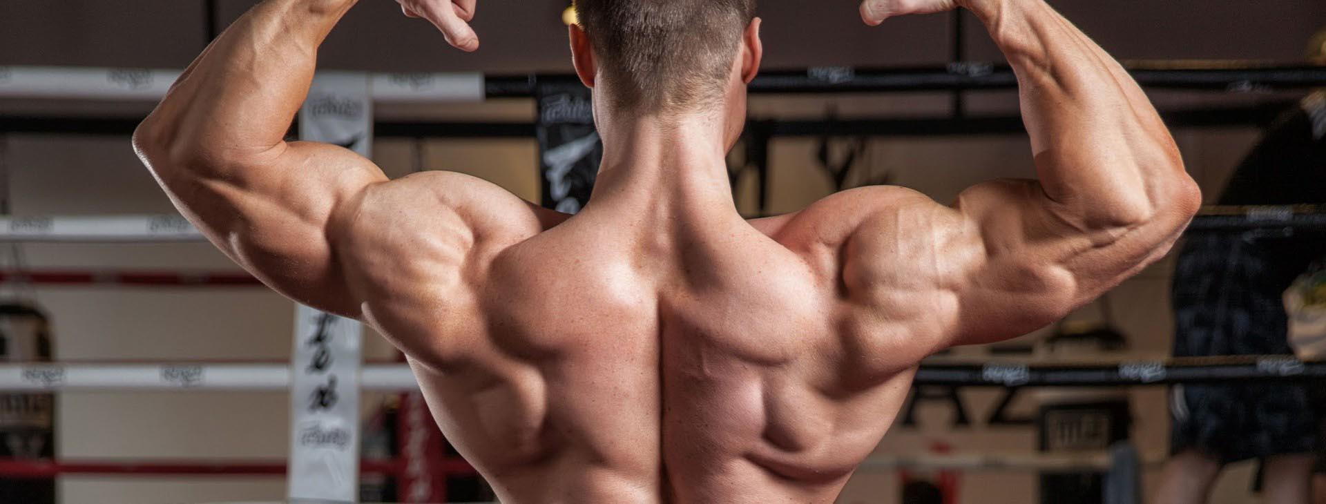 mistä saa steroideja